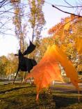 見上げる秋空 Hさん