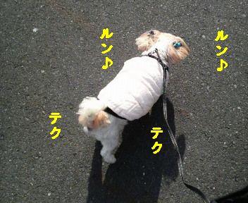 2010010313010000.jpg