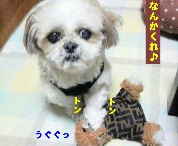 2010021321080001.jpg