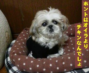 2011032121170001.jpg