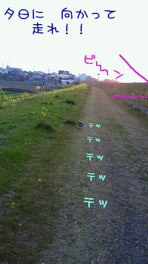 NEC_0809-1.jpg