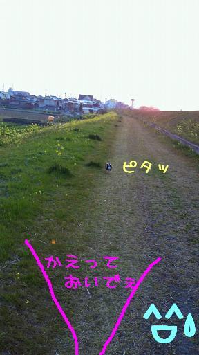 NEC_0809-2.jpg