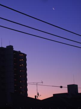 2011夜明け前