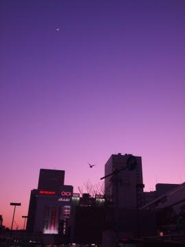 20110109_kawasaki_suneset