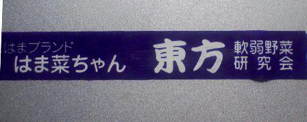 SA380253.jpg