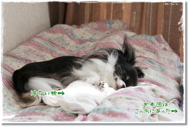 002_20110705210916.jpg