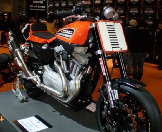 Harley_Davidson_XR1200_.jpg