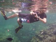 水中カメラマン若