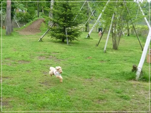 20110718_114.jpg