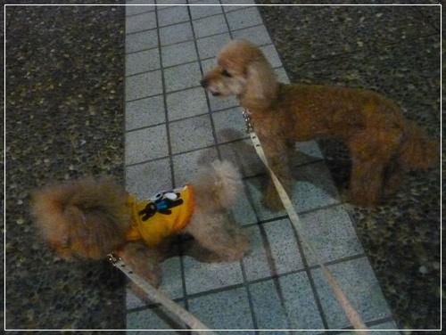 20110810_52.jpg