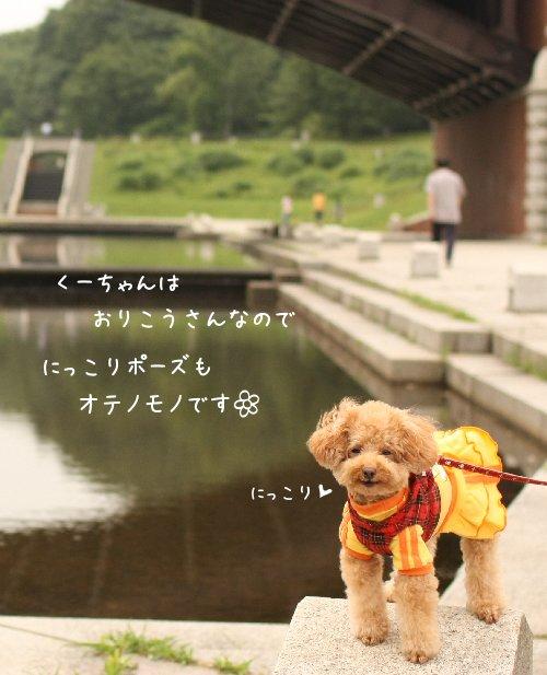 Img_7011-1.jpg