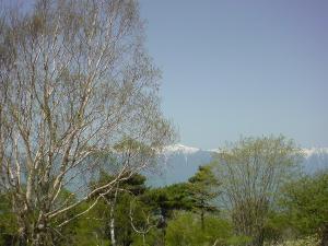 登山道風景