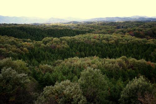 kitayamapark_tenboudaikara.jpg
