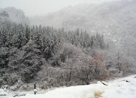 小国初雪1