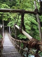 徳島かずら橋