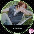 TMRevolution-5.jpg