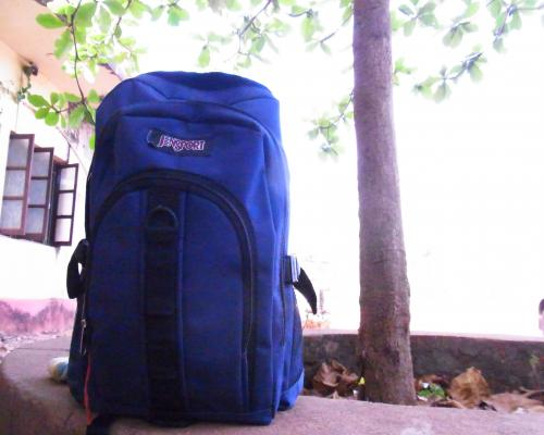 RIMG0519_convert_20110512212957.jpg