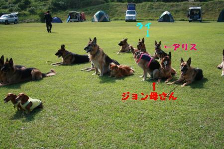 IMG_0667_convert_20091006180421.jpg