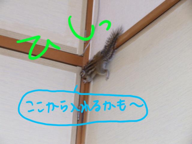 DSCF091005d8908.jpg