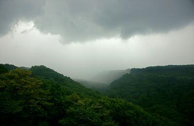 rain110813.jpg