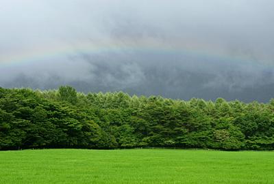 rainbow110731_2.jpg