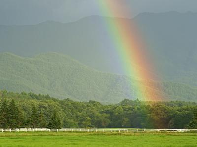 rainbow110808_1.jpg