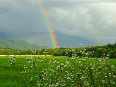 rainbow110808_3.jpg