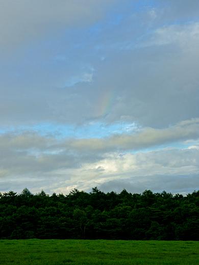 rainbow110826_04.jpg