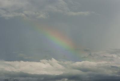 rainbow110826_08.jpg