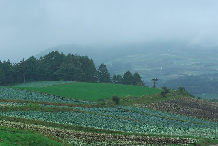嬬恋村の風景