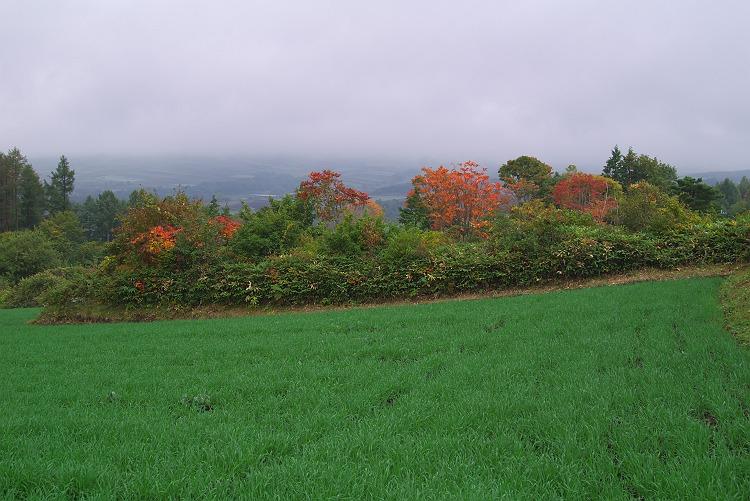 嬬恋村の風景 4