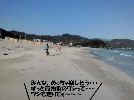 20101109135618[1]