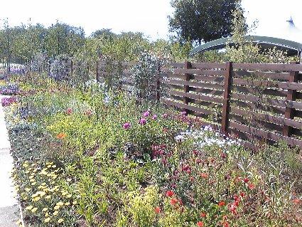 野鳥の森ガーデン