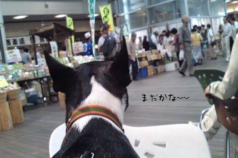 101003_1046_03blog.jpg