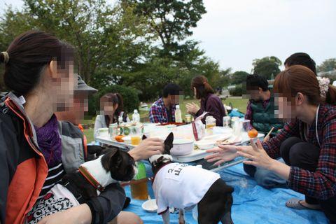 IMG_3281blog.jpg