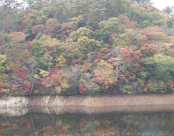 谷山自然公園1