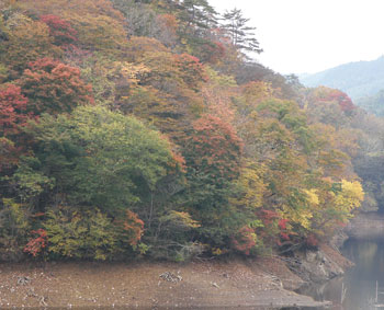 谷山自然公園2