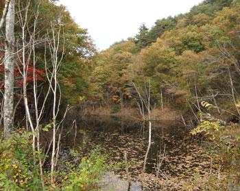 谷山自然公園7