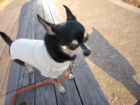 手編みのセーター2