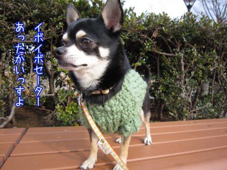 モコモコ手編みセーター4