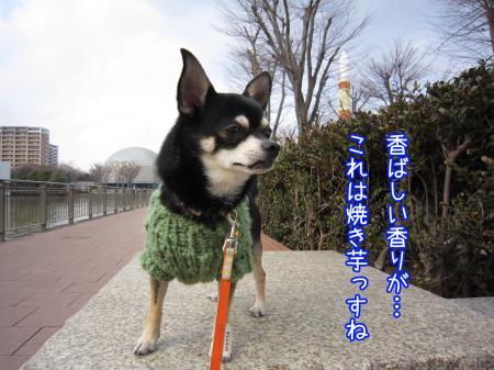 モコモコ手編みセーター5