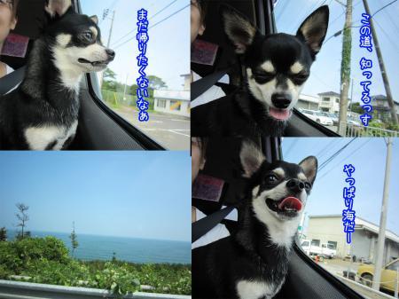 海岸を走ろう!1