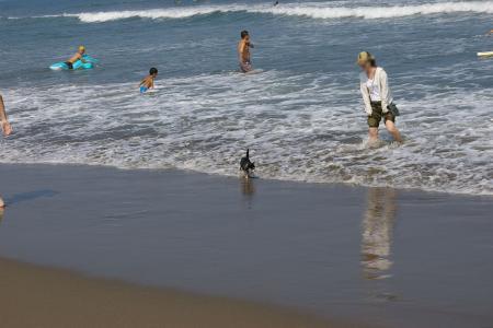 海岸を走ろう!6