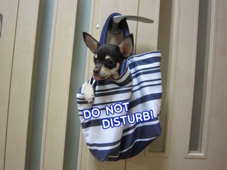 入室禁止!1
