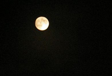 中秋の名月といえば。。。1