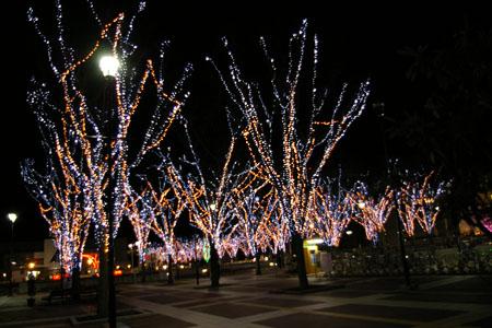 メリークリスマス2010。1