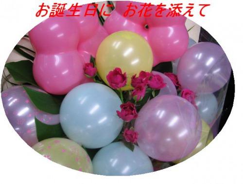 s_20091130181452716.jpg