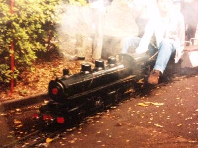 8950_マレー式蒸気機関車のライブスチーム