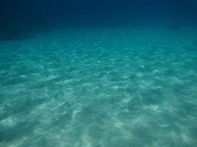 砂浜が綺麗~(≧▽≦)♪