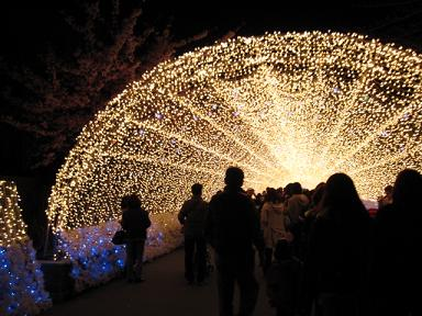 そして、わくわくの光のトンネル~!